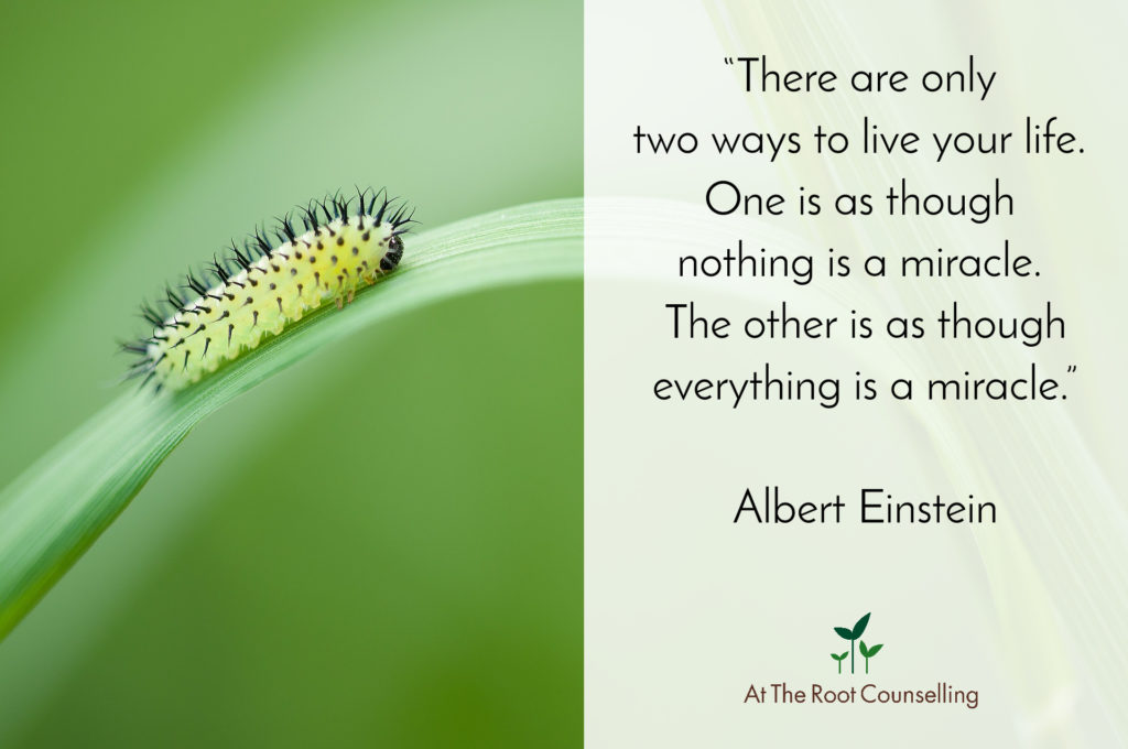 At The Root Counselling_Quote #51